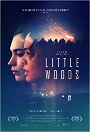 LITTLE WOODS Release Poster