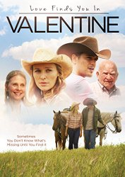 LOVE FINDS YOU IN VALENTINE DVD Cover